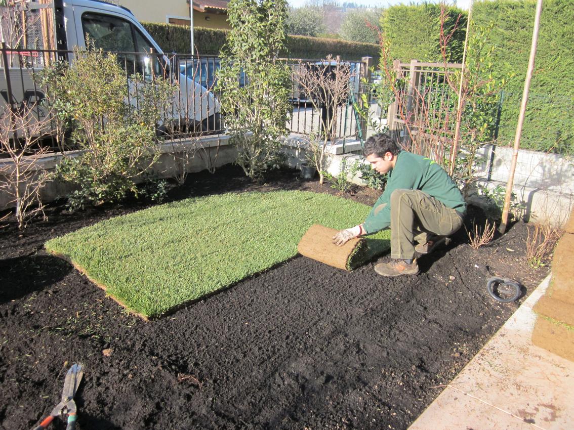 Isoni giardini i giardinieri di verona for Prato erboso a rotoli