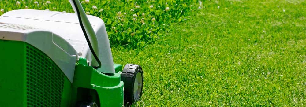 Isoni giardini i giardinieri di verona for Manutenzione giardini